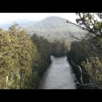 Tahune Airwalk Tasmania – Spectacular Experience
